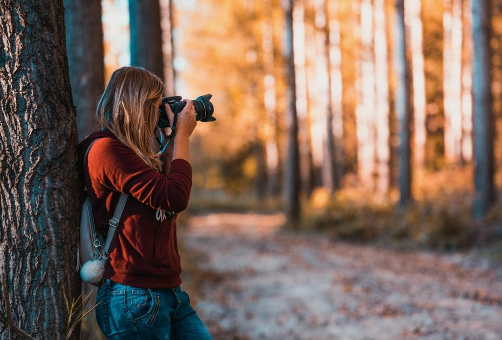 7 Best Mirrorless Camera For Professionals (Buying Guide)